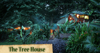 Costa Rica Tree House Lodge: Tree House