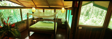 Costa Rica Tree House Lodge: the tree house bedroom