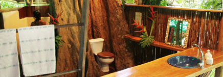 Costa Rica Tree House Lodge: the tree house bathroom