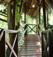 Costa Rica Tree House Lodge: tree house gallery photo 5